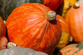 Pumkins Royalty Free Stock Photos