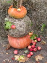 Pumpkin apples and hay autumn vegetables Royalty Free Stock Photos
