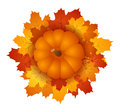 Pumpkin and autumn maple leaves. EPS 10  ill Stock Photos