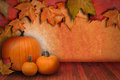Pumpkin Background with Leaves Royalty Free Stock Photo