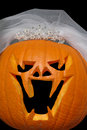 Pumpkin Bride Royalty Free Stock Images
