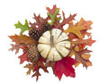 Pumpkin on cluster of fall leaves and pine cones Stock Images
