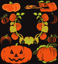 Pumpkin collection clip art of pumpkins and jack o lanterns Royalty Free Stock Image