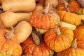 Pumpkin colorful and varied pumpkins on the market for sale Royalty Free Stock Photography