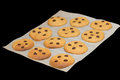 Pumpkin cookies just oven chocolate black background Royalty Free Stock Images