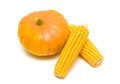 Pumpkin and corn on the cob close up on a white background horizontal photo Royalty Free Stock Images