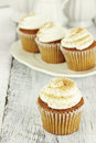 Pumpkin Cupcakes Royalty Free Stock Photos
