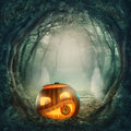 Pumpkin in dark forest halloween Royalty Free Stock Photography