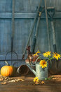 Pumpkin and flowers with tools Royalty Free Stock Photo