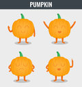 Pumpkin. Funny cartoon vegetables. Organic food. Vector