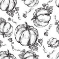 Pumpkin graphic ink vector illustration isolated on white backdrop, hand drawn engraved vintage sketch, seamless pattern