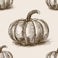 Pumpkin hand drawn sketch seamless pattern vector Royalty Free Stock Photo