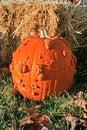 Pumpkin & Hay Stock Image