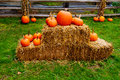 Pumpkin and hay over in a farm Stock Image