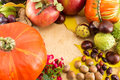 Pumpkin with hazelnuts, chestnuts and walnuts Royalty Free Stock Photo