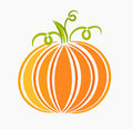 Pumpkin illustration Stock Photography