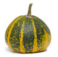 Pumpkin isolated over white Stock Images