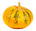 Pumpkin isolated on white background Stock Image