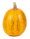 Pumpkin isolated on white background Royalty Free Stock Image