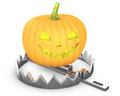Pumpkin jack lantern in a bear trap Royalty Free Stock Image