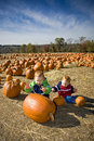 Pumpkin patch fun Stock Photo