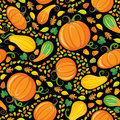 Pumpkin Patch Seamless Pattern Royalty Free Stock Photos