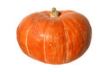 Pumpkin with peduncle Royalty Free Stock Images