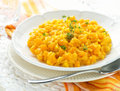 Pumpkin risotto Royalty Free Stock Photo