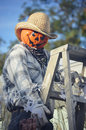 Pumpkin Scarecrow Climbing a Ladder Royalty Free Stock Photo