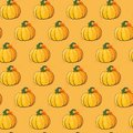 Pumpkin Seamless Pattern Background Autumn Harvest Concept Season Fall Ornament Royalty Free Stock Photo
