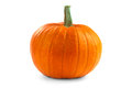 Pumpkin single isolated on a white background Royalty Free Stock Images