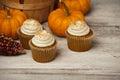 Pumpkin Spice Cupcakes Royalty Free Stock Photo