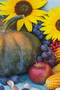 Pumpkin, sunflowers and different ripe vegetables Royalty Free Stock Photo