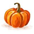 Pumpkin Vector Illustration  H...