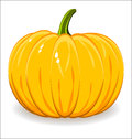 Pumpkin vector on white background Royalty Free Stock Images