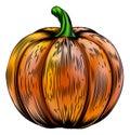 Pumpkin Vintage Woodcut Illust...