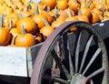 Pumpkin Wagon Stock Images