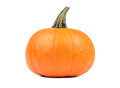Pumpkin on white background Royalty Free Stock Photos