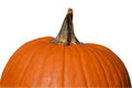 Pumpkin With White Background
