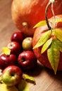 Zucca foglie
