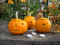 Pumpkins with autumn leaves halloween background Royalty Free Stock Photography