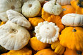 Pumpkins background Stock Image
