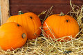 Pumpkins In The Barn Royalty Free Stock Images