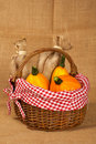 Pumpkins in the basket Stock Images