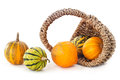 Pumpkins in basket on white background Royalty Free Stock Image