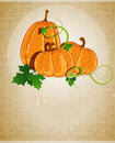 Pumpkins on a beige background three with sprouts and leaves with retro patterns Stock Images