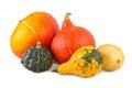Pumpkins Colorful Assorted Squ...
