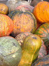 Pumpkins crop of the put in one place Royalty Free Stock Photo