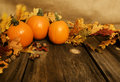 Pumpkins Fall Leaves Royalty Free Stock Photo