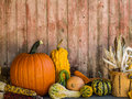 Pumpkins and gourds against old door backdrop colorful Royalty Free Stock Photos